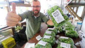 سبز 300x169 - بسته بندی سبزیجات در سال های اخیر