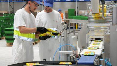 تصویر مراحل کار شرکت های چاپ و بسته بندی : چاپخانه